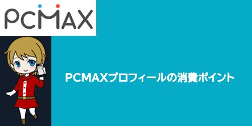 PCMAXプロフィールの消費ポイント