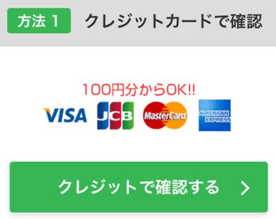 PCMAXログイン用クレジットカード画面